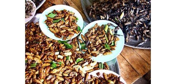 27.Gastronomie en Isan ?