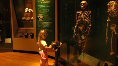 Field Museum - Chicago