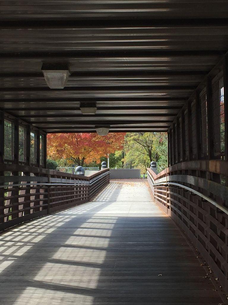 automne dans le centre ville