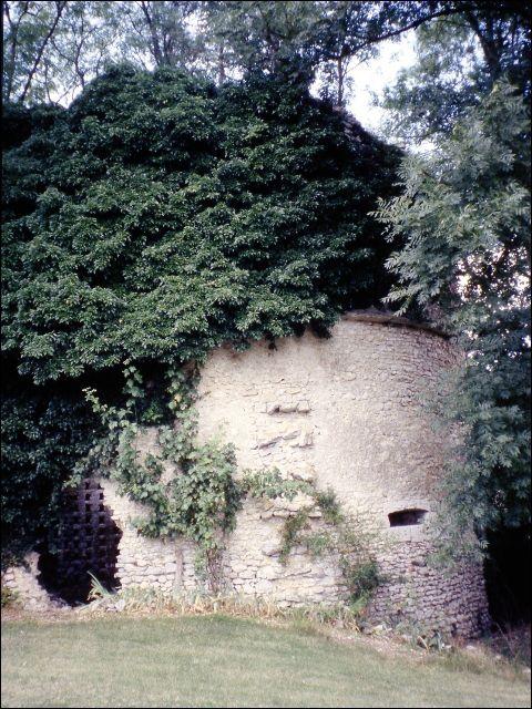 Les ruines de l'ancienne abbaye du Rondonneau.