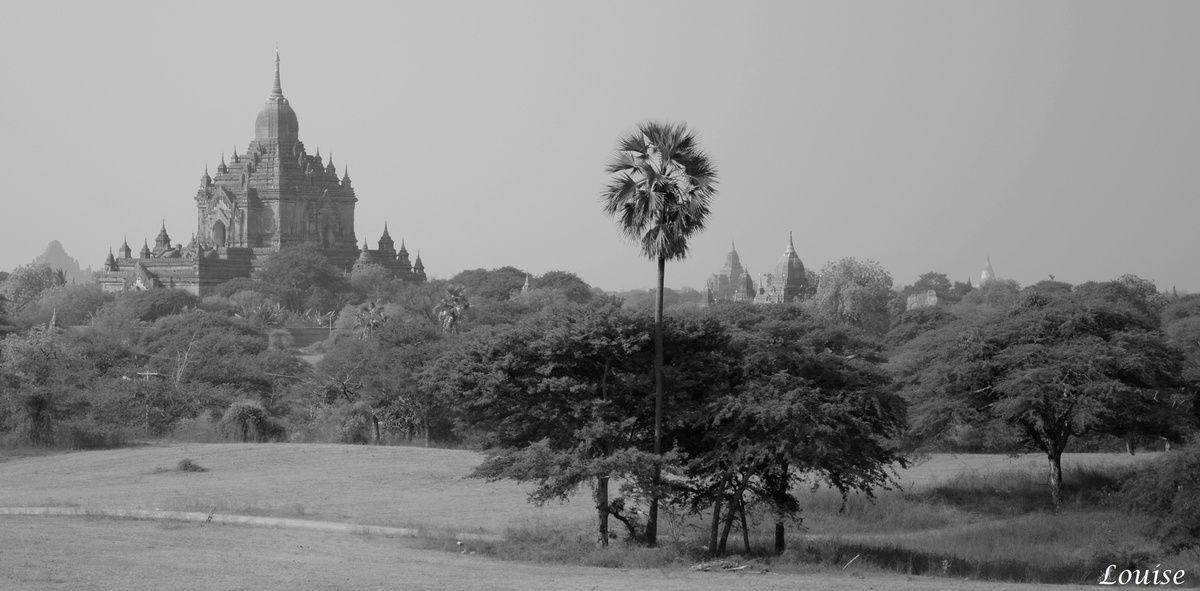 Birmanie : Bagan