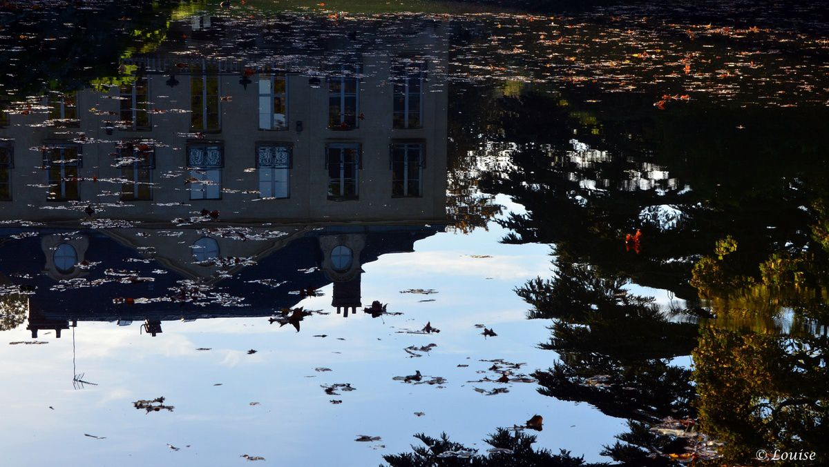 Arboretum de la Vallée-aux-Loups