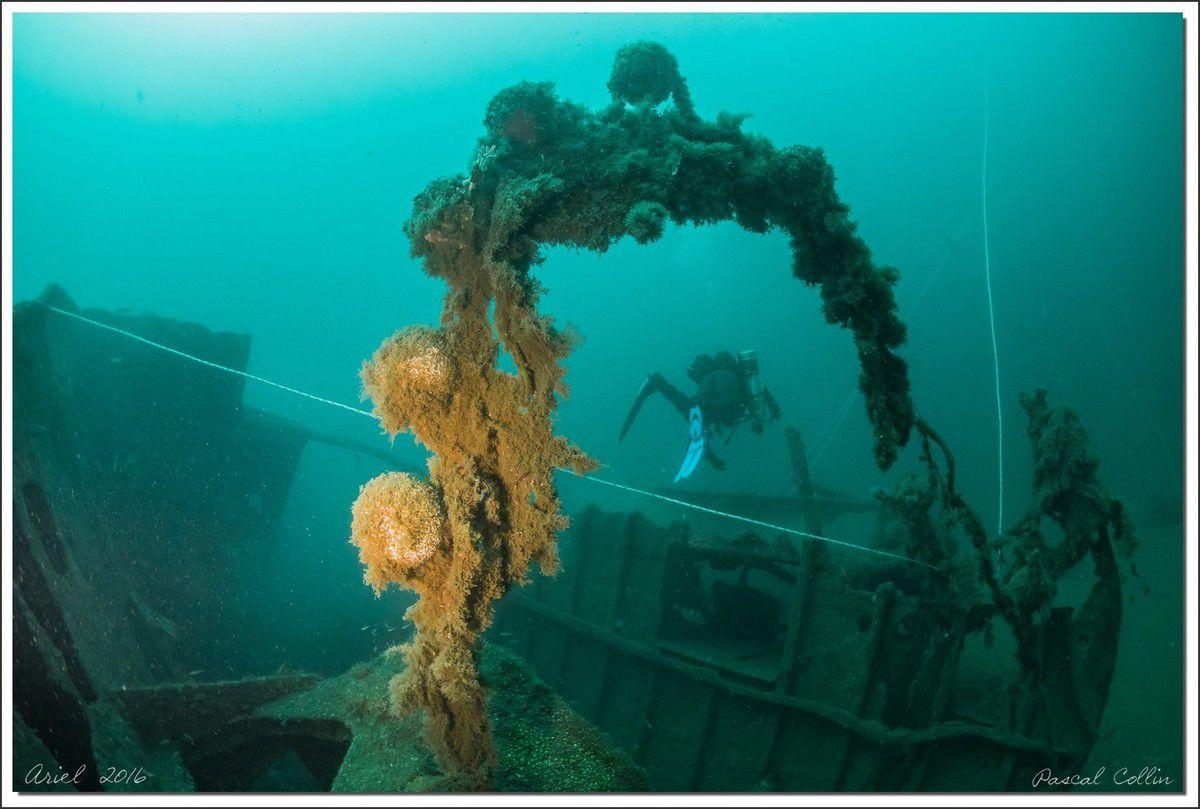 Ariel, bric à brac sous-marin