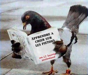 https://www.facebook.com/pierre.demarmier?fref=nf