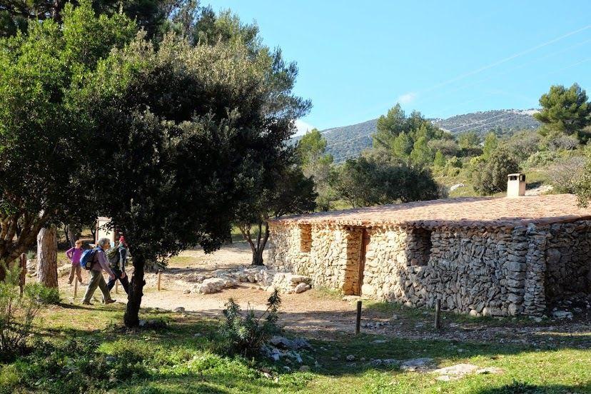 Les Jas de Cuges les pins en rando tonique..