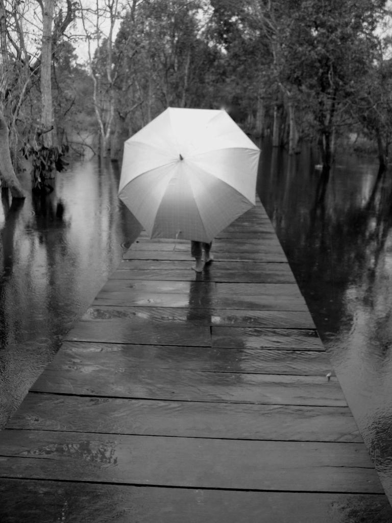 Gris... parapluie ?