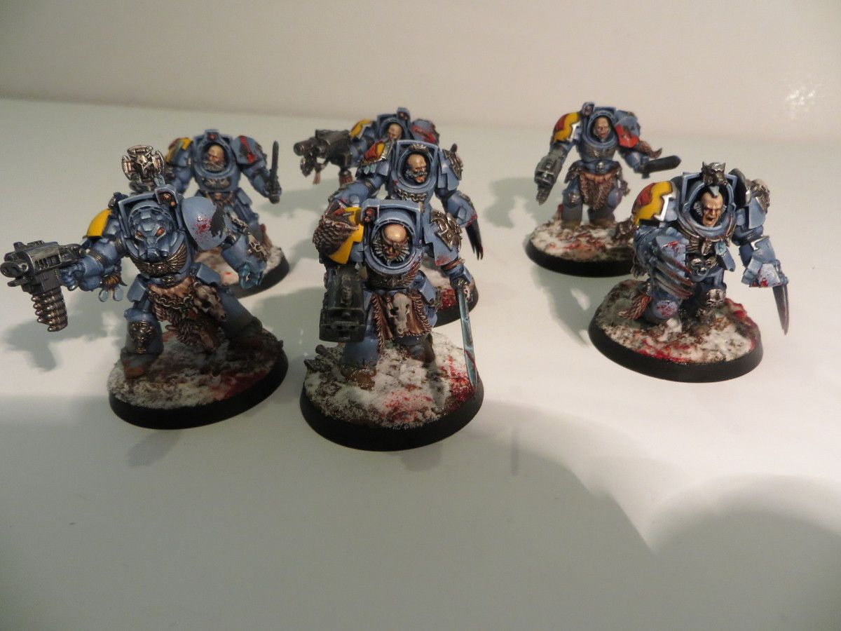 6 Wolf guards