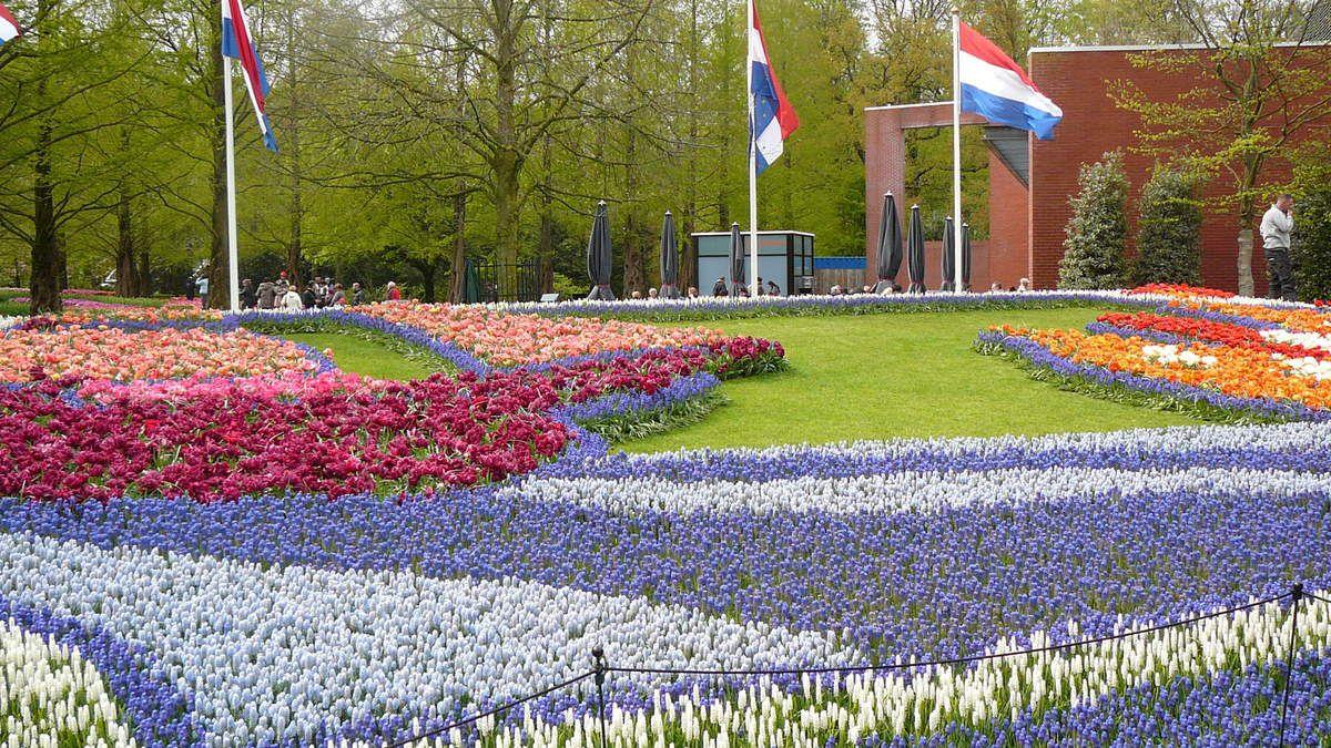 Le parc Keukenhof  (Pays -bas ) volet 3 et fin.