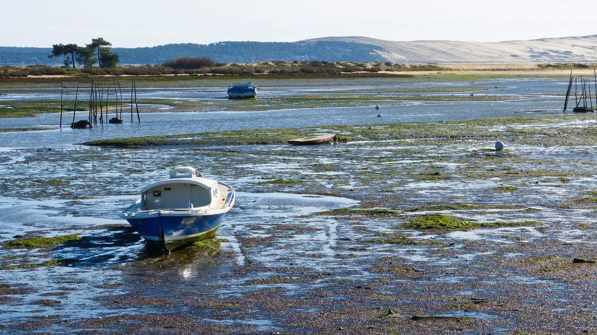 Devinette du samedi 9 janvier 2016 - Suite - Les huîtres et la presque-île du Cap-Ferret - Léon Lesca