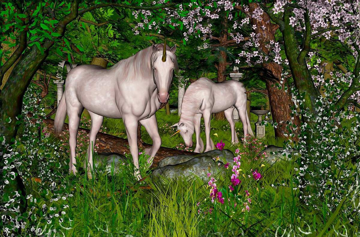 Erwin Pale Graphics - Le jardin des licornes - 2005-2015