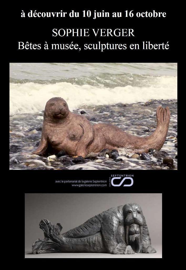 &quot&#x3B;BETES A MUSEE&quot&#x3B;...UNE DECOUVERTE ARCHEOLOGIQUE SENSATIONNELLE ... AU MUSEE DE BERCK SUR MER...