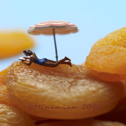 Abricots romarin comme un clafoutis.....sans gluten