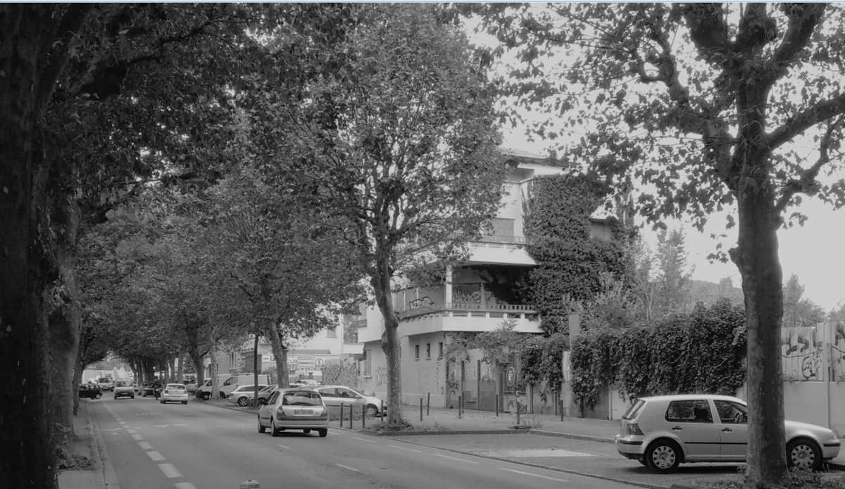 Rue des Alliés : un axe très fréquenté