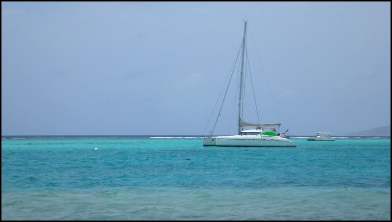 En route pour les Tobago Cays !