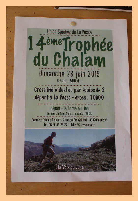 14ème Trophée du Chalam à La Pesse 2015.