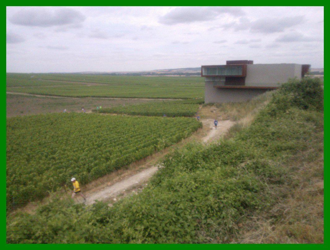 Le Trail des Tordus 2015