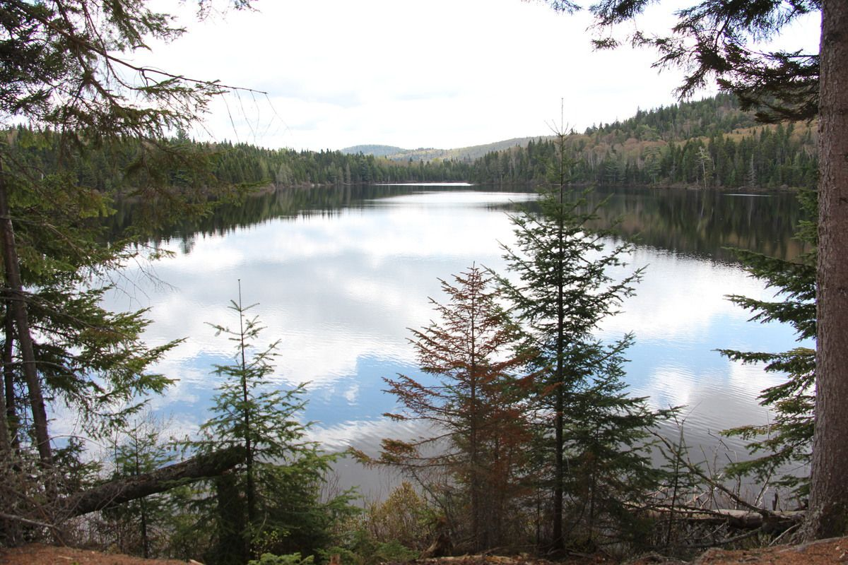 Le lac Clarence