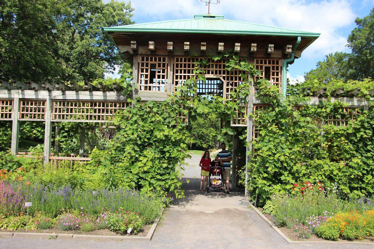 Visite du jardin botanique, juillet 2015