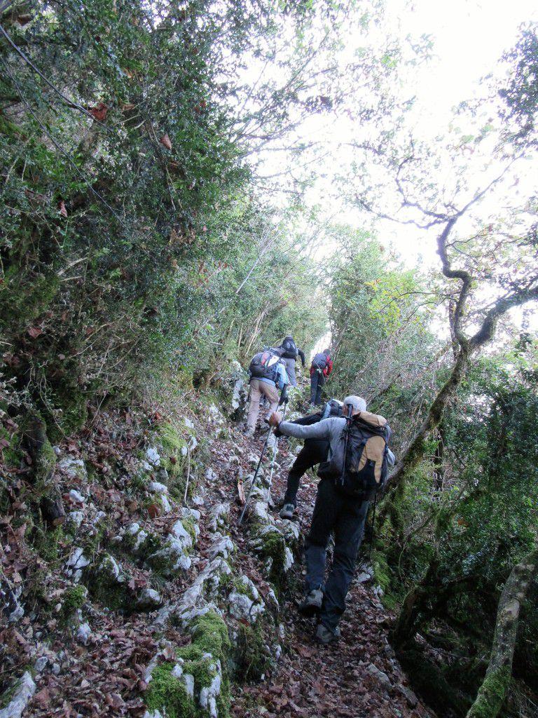 Vues du sentier escarpé qui monte vers le Mont St Michel avec le Granier au loin.