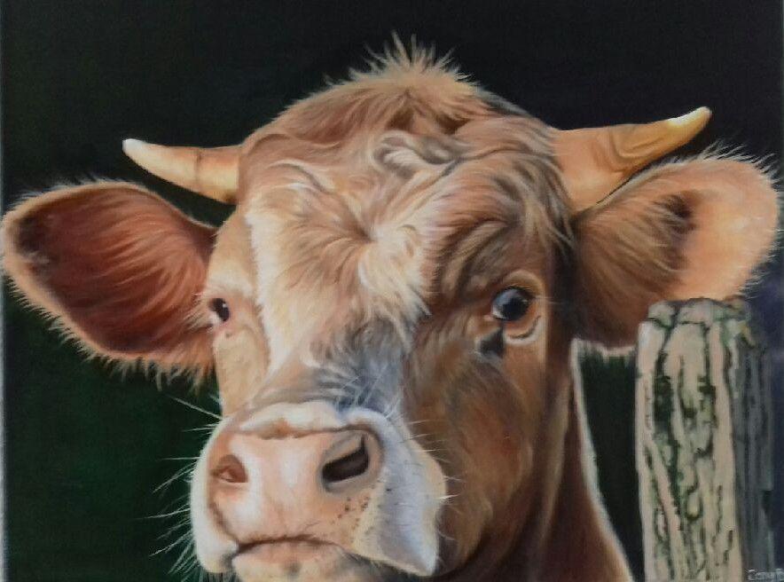 Vache peinte à l'huile sur toile par Jany d'après une photographie