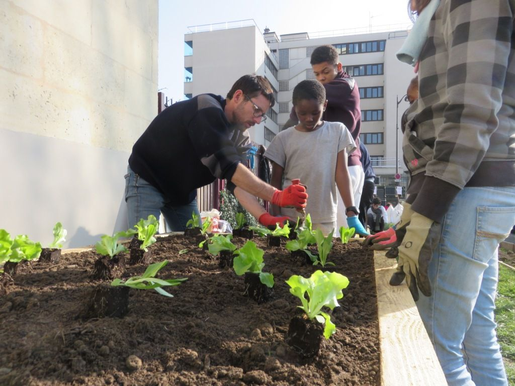 Le jardin Faure'midable en chantier