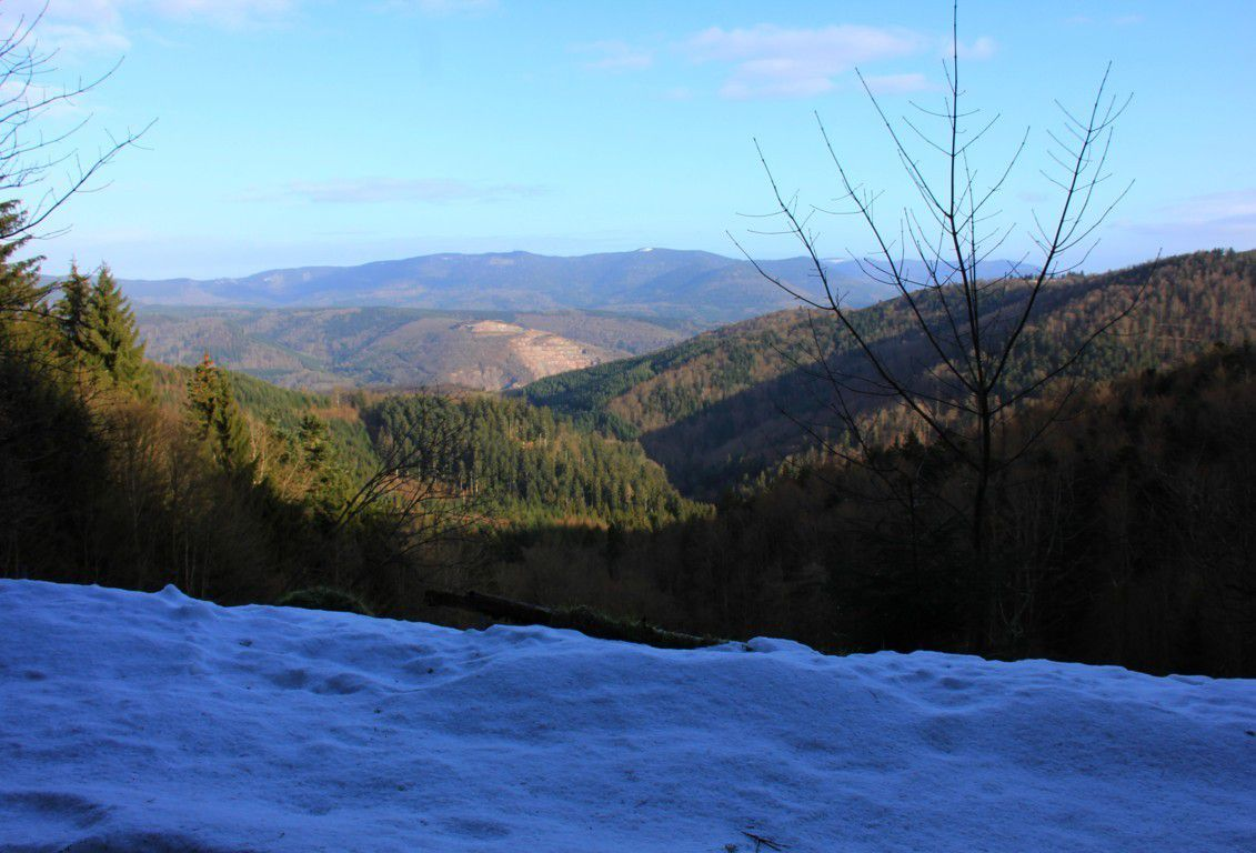 Vue sur le massif du Grand Katzenberg.