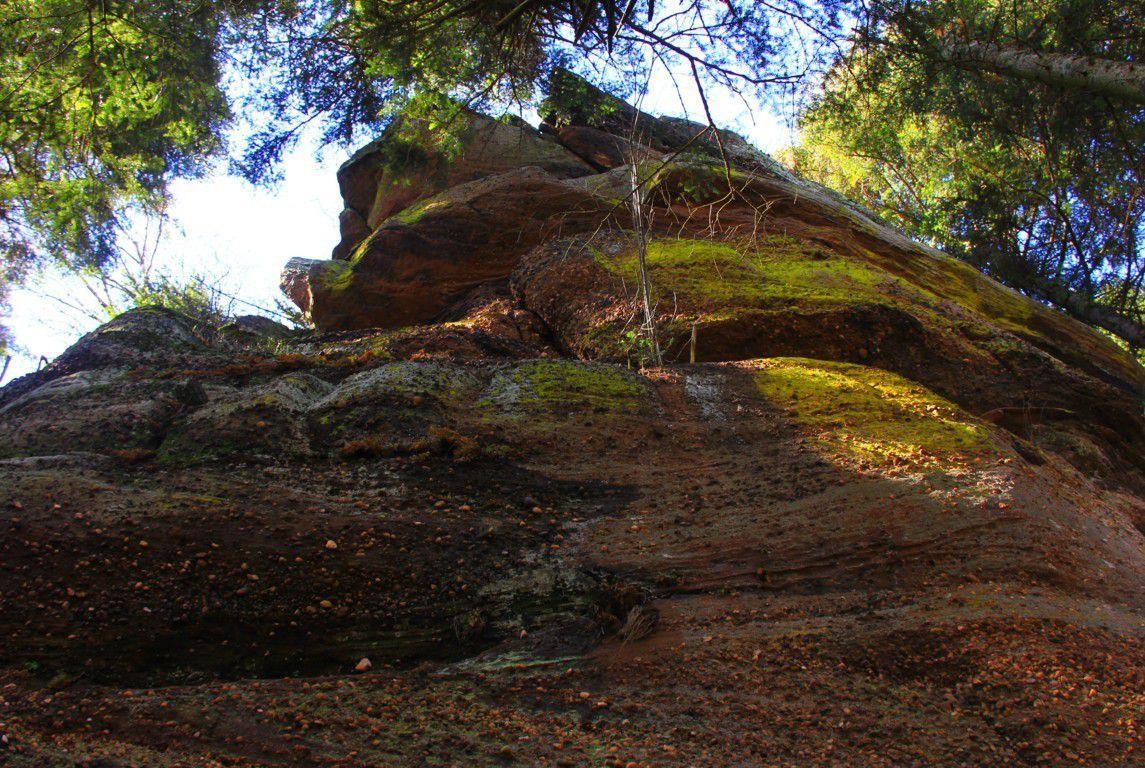Le rocher du Rosskopf, vu d'en bas.