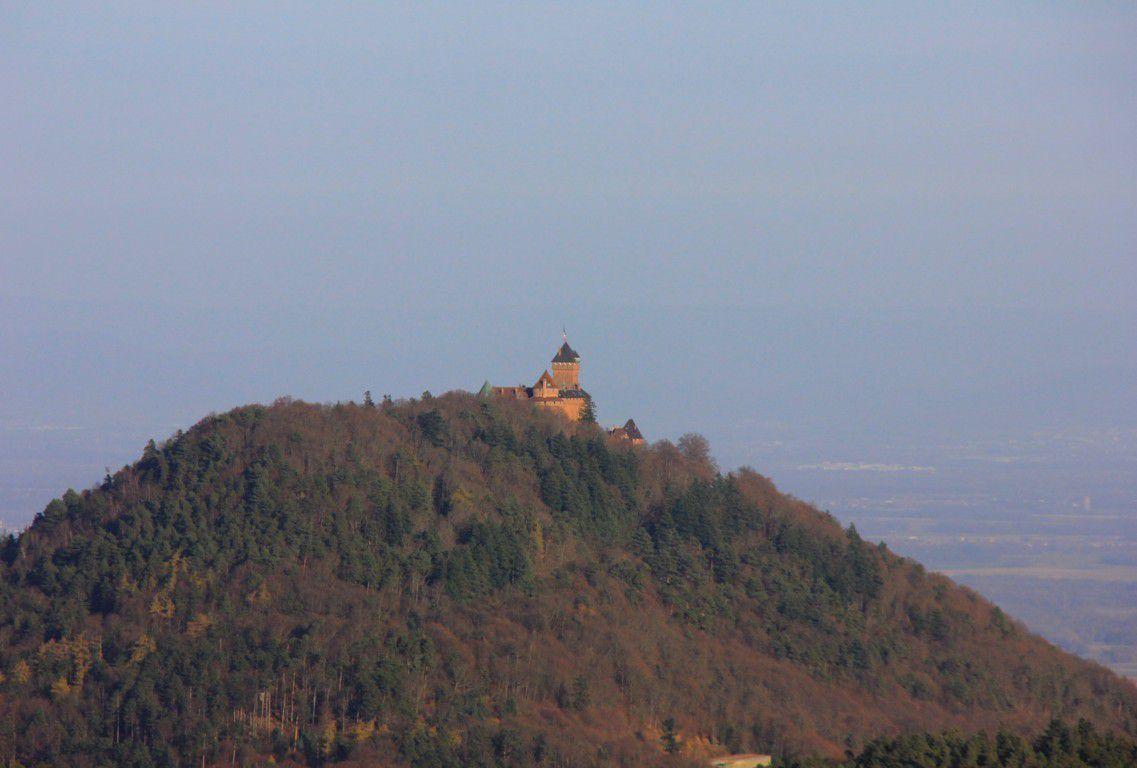 Une vue sur le Haut Koenigsbourg.