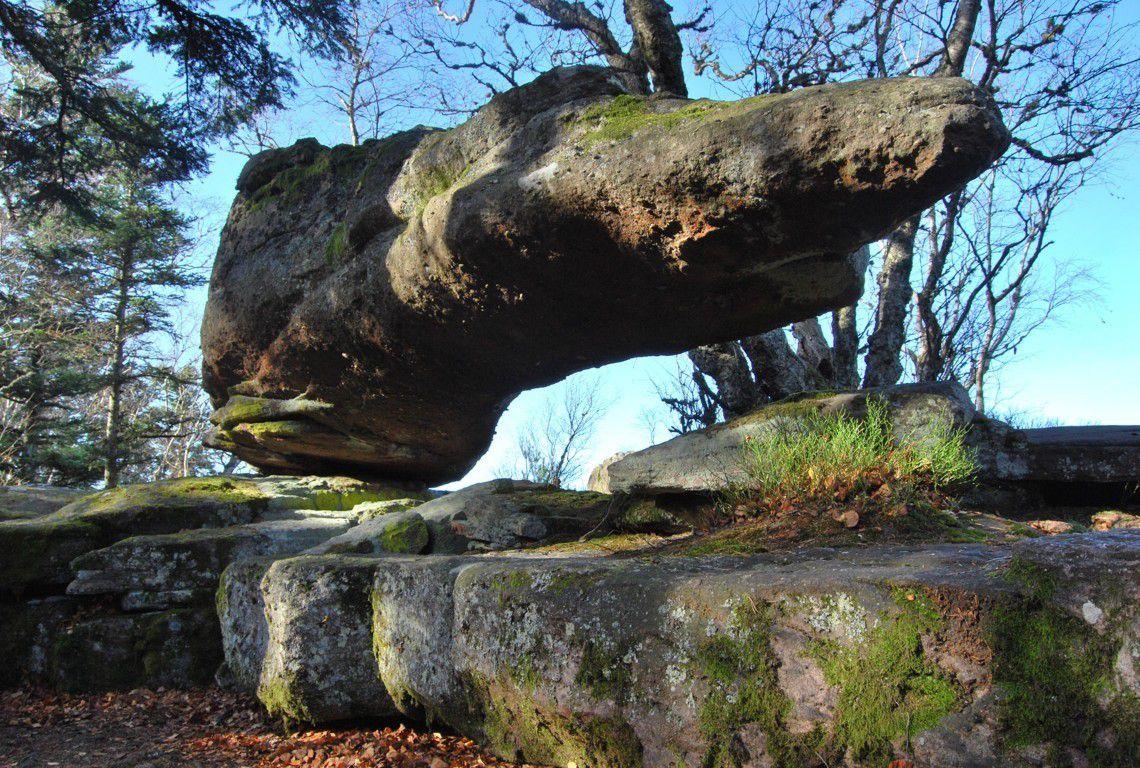 Un rocher vraiment étrange, le rocher des Reptiles !