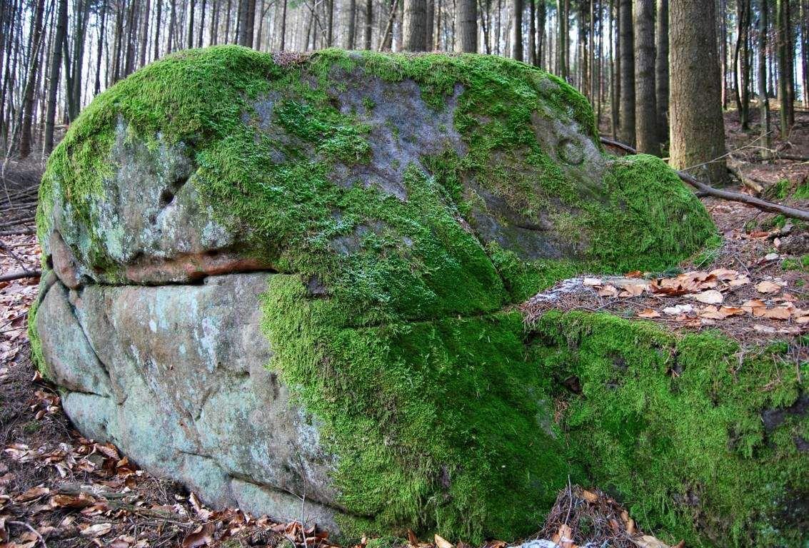 Encore un rocher portant un signe circulaire...