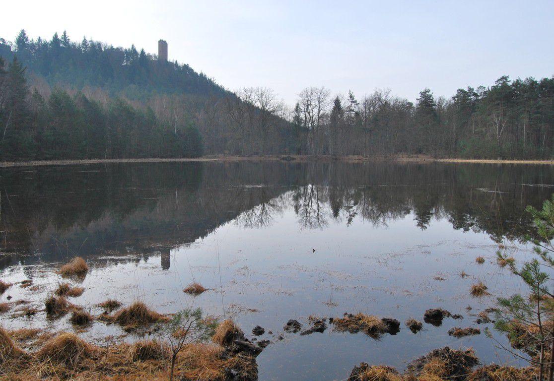 Le donjon du Waldeck se mire dans les eaux sombres d'un étang.