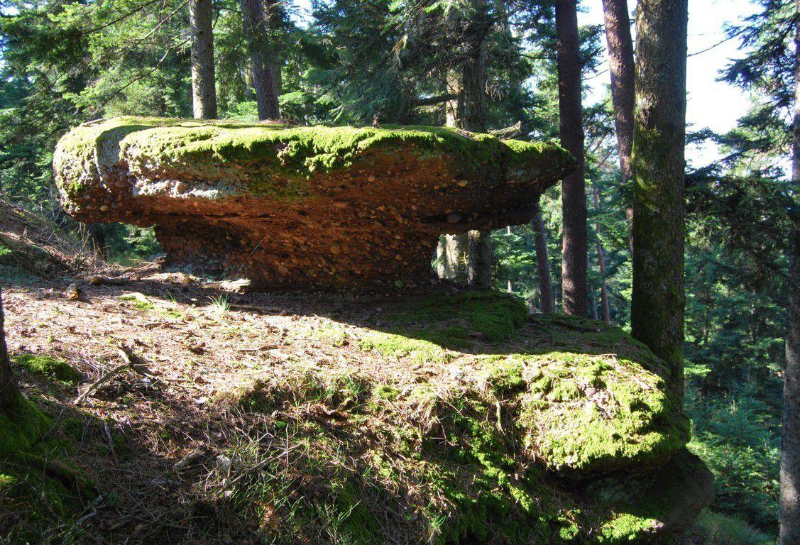 Rocher du champignon