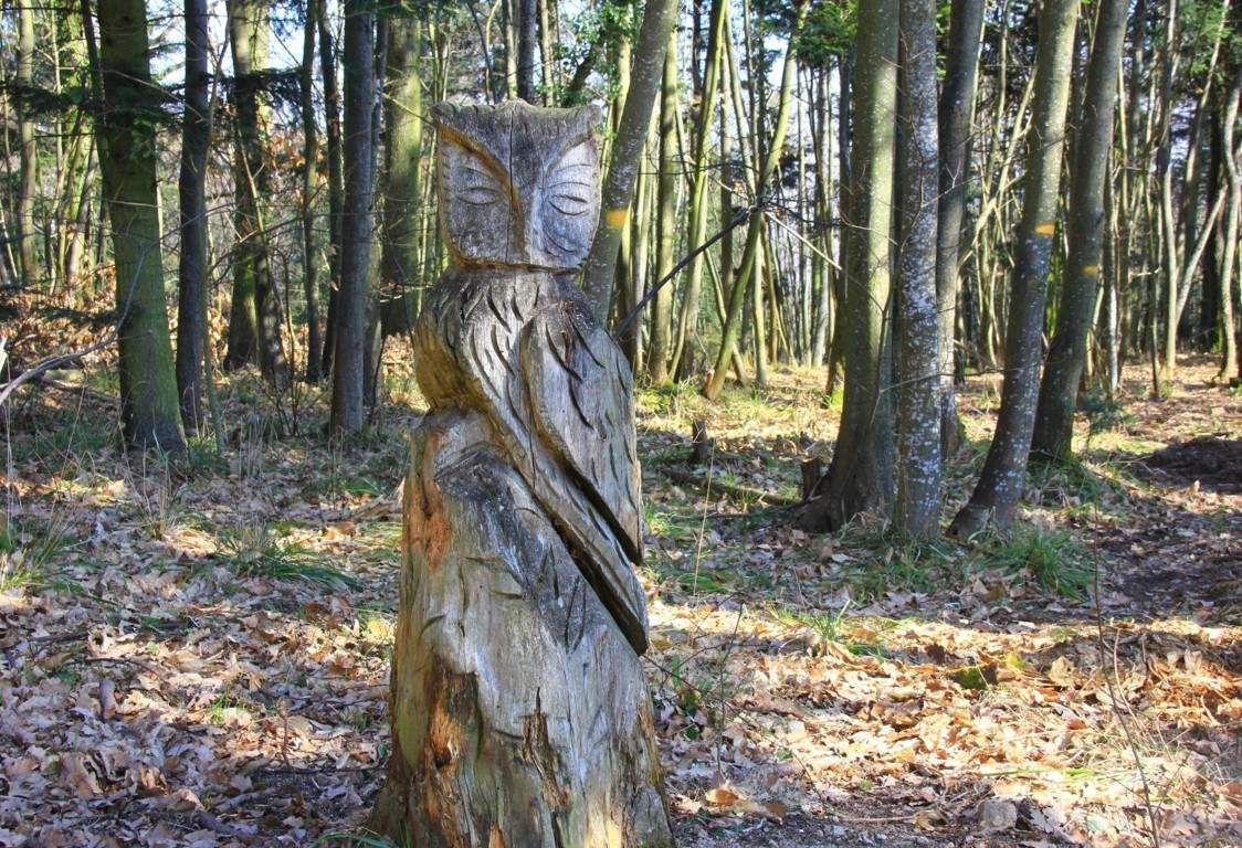 Sur le sentier de l'écureuil.