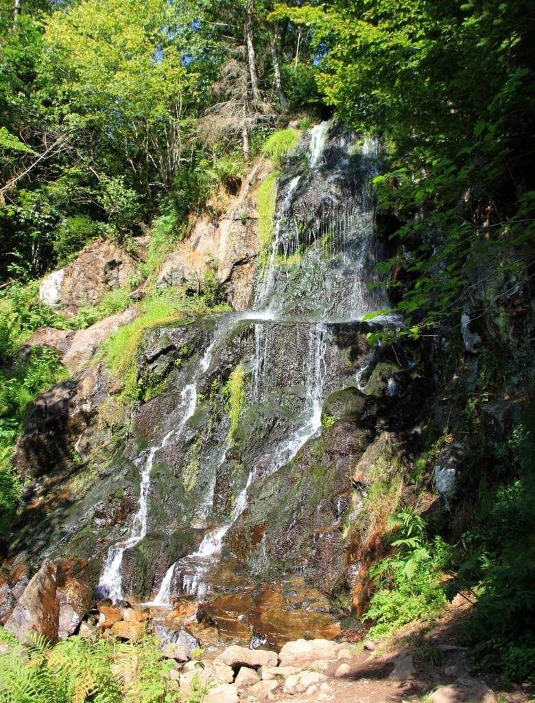 La chaleur de l'été fait manquer d'eau à la cascade du Hohwald