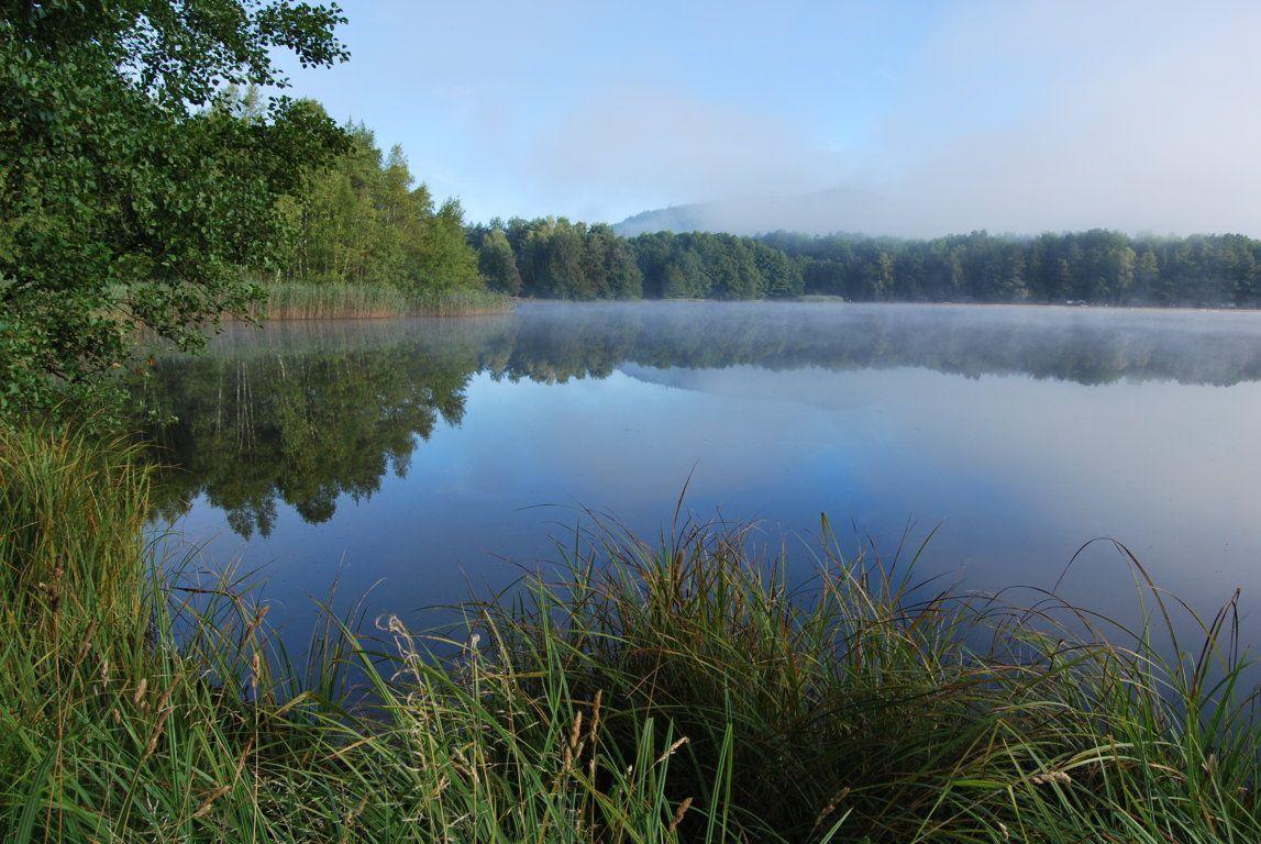 Les eaux calmes du lac de Hanau, un matin d'été ...