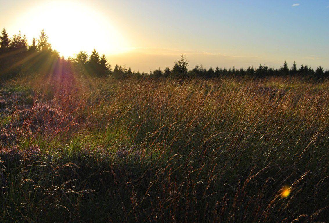 Coucher de soleil sur les hautes chaumes