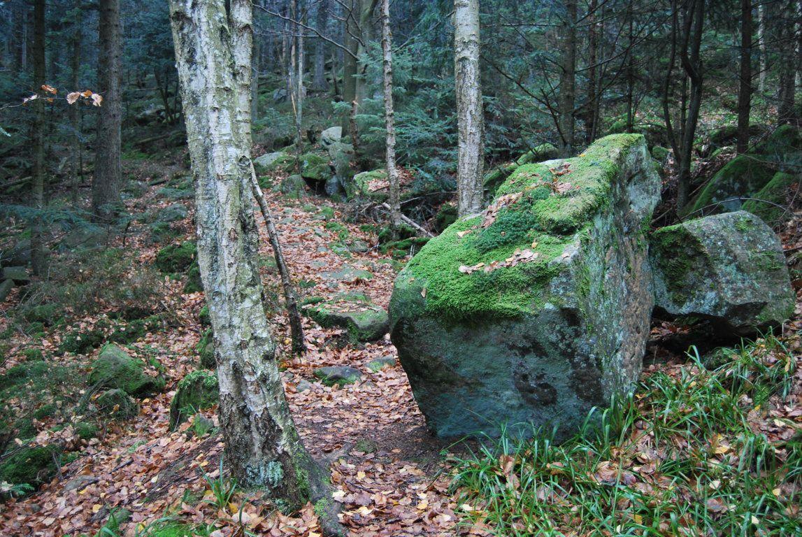 La roche celtique (on dirait une rouelle gauloise au bas du rocher)