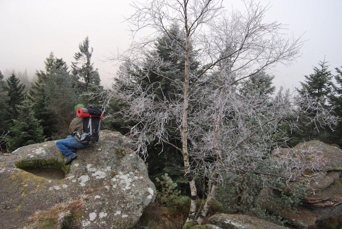 Au sommet du Schneeberg