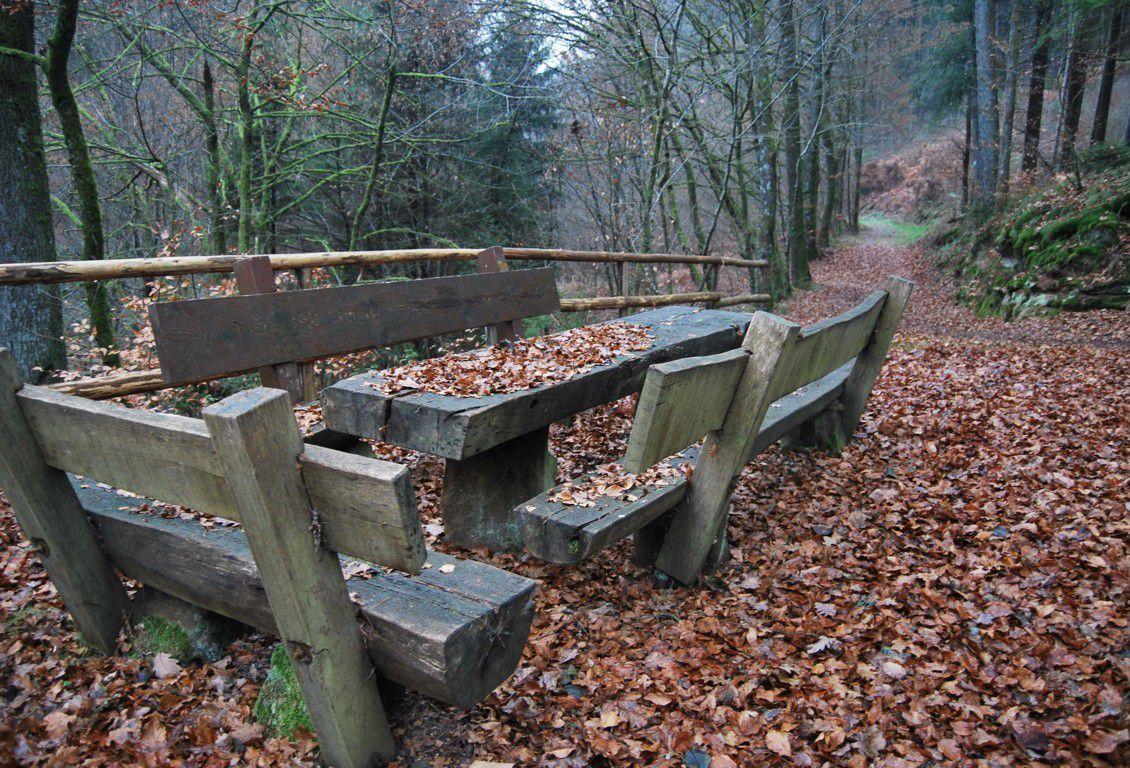 Notre randonnée commence du côté Allemand, au Sud-Est du village de Hilst