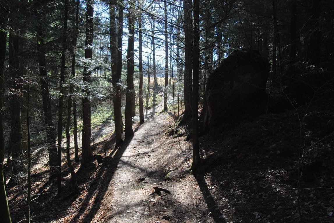 Du Hagelthal au monastère du Mont Sainte Odile