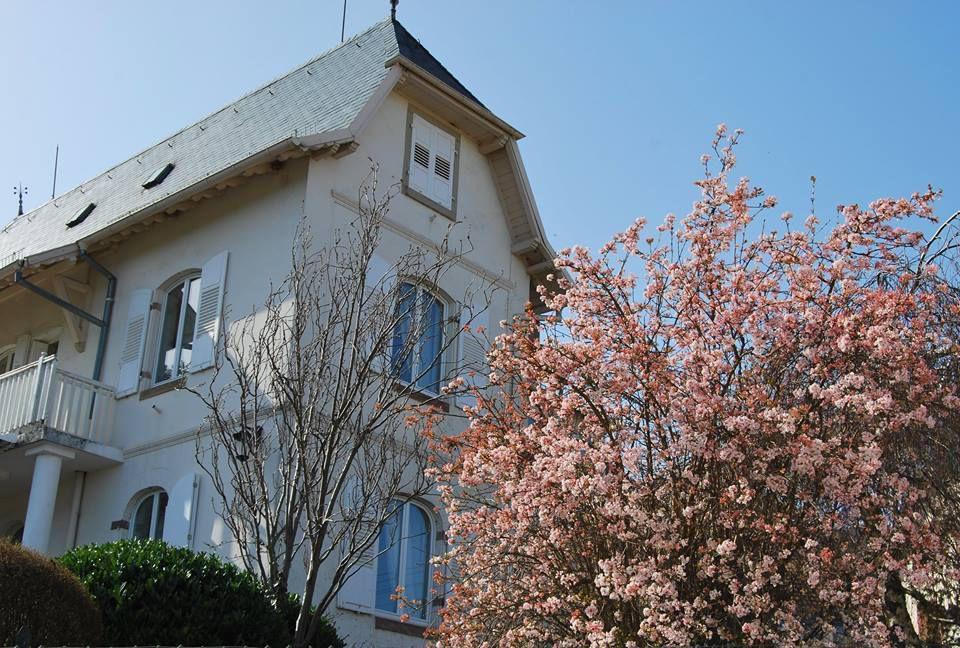 Le printemps fleurit aux arbres à la villa Maya (St Nabor) !