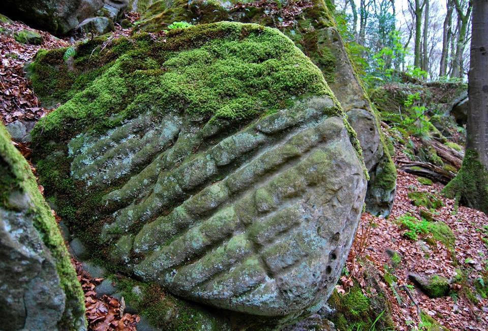 Certains rochers présentent une érosion très particulière