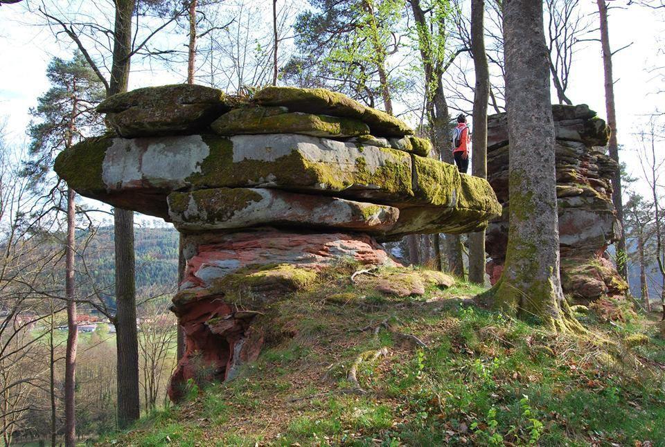 Un rocher-champignon sur la crête du Rippertshalde