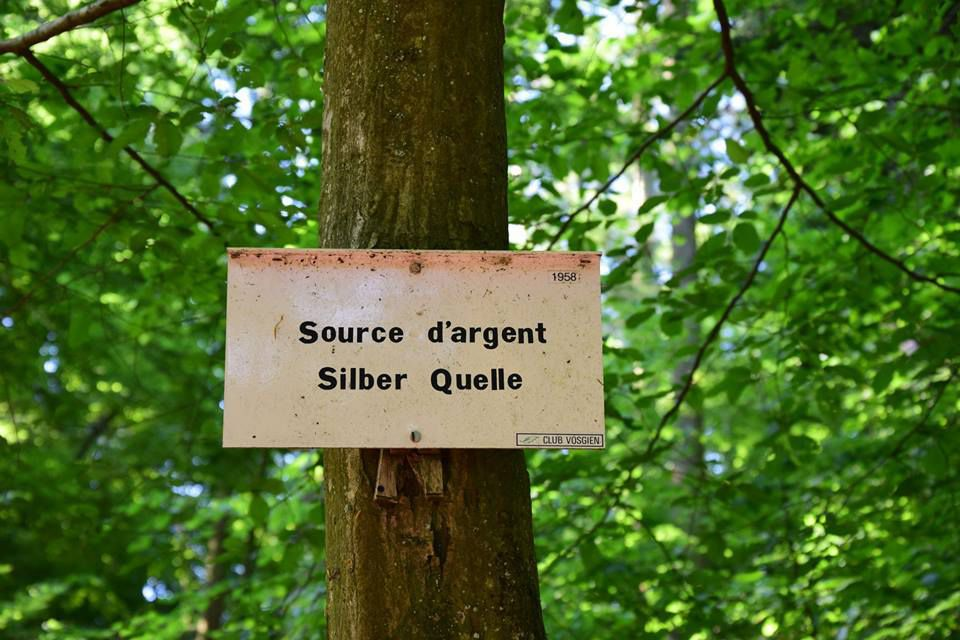 Le Silberberg a sa source