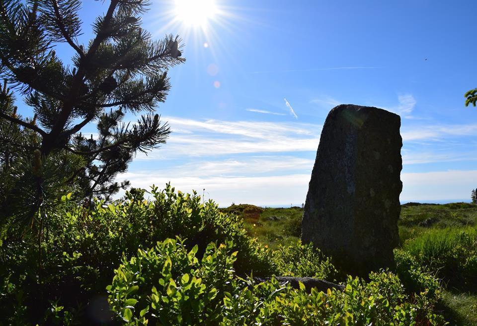 Une pierre levée sur les Hautes chaumes