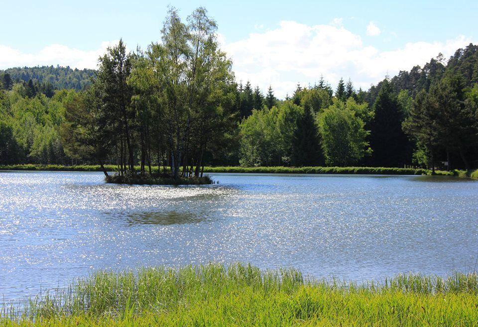 L'étang de la Gagère