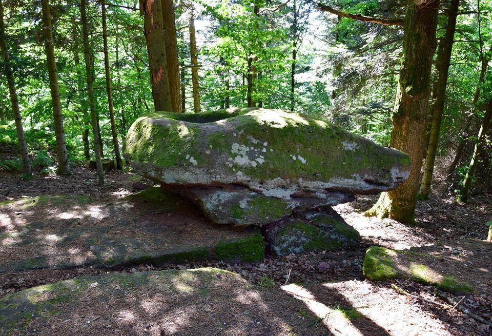 La pierre des Druides est un rocher qui a été amené à cet endroit puis un bassin y est creusé