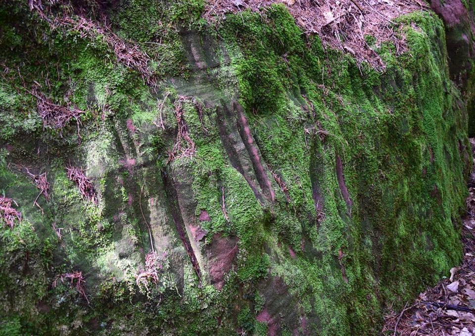 Des polissoirs sur la roche