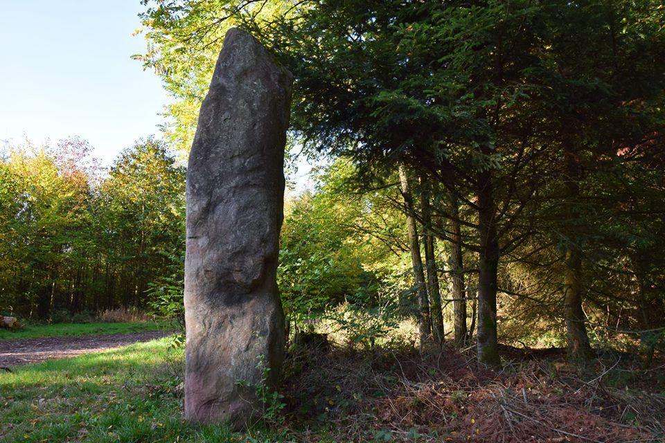 Une pierre dressée au carrefour des deux chênes