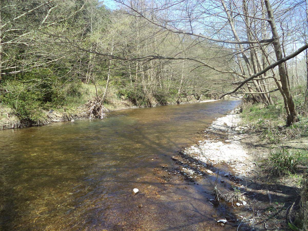 """le Lez, un """"long fleuve tranquille"""" !"""